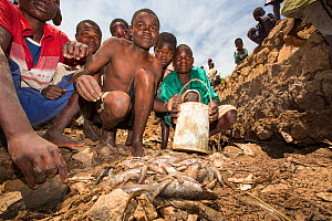 Children gathering fish, left behind by January 2015 flooding, in a hole in damaged bridge near Phalombe. Malawi, March 2015. - Ashley Cooper