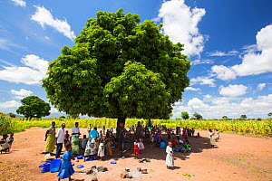People displaced by the January 2015 floods sheltering from the heat of the sun under a tree in Baani refugee camp, Phalombe, Malawi. - Ashley Cooper