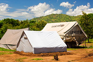Refugee camp tents for people displaced by flooding in January 2015, Shire Valley near Chikwawa, Malawi, March 2015. - Ashley Cooper