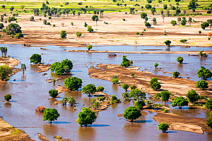 Farmland flooded and covered in debris after the January 2015 flooding, Malawi, March 2015. - Ashley Cooper