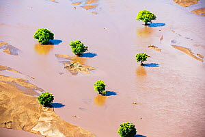 Flood waters and farmland destroyed  after the January 2015 flooding, Malawi, March 2015. - Ashley Cooper