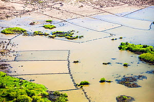 Aerial view of flooded farmland around Makhanga, which two months after the January 2015 floods, is still cut off after rail and road connections were washed away. Malawi, March 2015. - Ashley Cooper