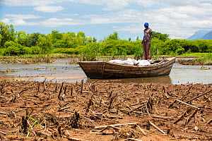 Boat ferrying food supplies across flooded farmland near Mulanje, with maize crops destroyed by the floods in the foreground. Malawi, March 2015. - Ashley Cooper
