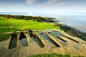 Ancient Stone graves at Heysham, Lancashire, England, UK, January 2006.  -  Ashley Cooper