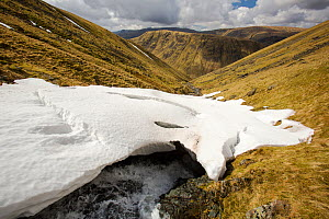 Raise Beck above Dunmail Raise, with large snow drift, Lake District, England, UK, April. - Ashley Cooper