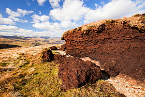 Peat hags near Loadpot Hill above Ullswater in the Lake District, UK. Peat bogs are a great carbon sink, as the sequestrate large amounts of carbon. They are also great natural sponges that are import... - Ashley Cooper