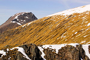 Ben Nevis from Aonach Beag, Scottish highlands, Scotland, UK, May 2005. - Ashley Cooper