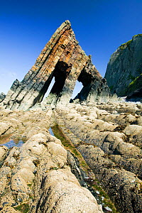 Black Church Rock near Clovelly in Devon, England, UK,  June. - Ashley Cooper