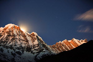 Night sky over Annapurna South and Annapurna Fang, with a glow from the moon setting behind the peak. Annapurna Sanctuary, Himalayas, Nepal, December 2012. - Ashley Cooper
