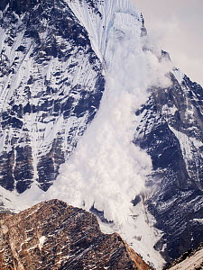 Avalanche on Machapuchare or Fishtail Peak in the Annapurna Himalaya, Nepal. It was caused by a massive block of glacial ice detaching from the summit cliffs,  29th December 2012. - Ashley Cooper