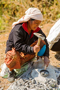 Nepalese woman crushing stone with a hammer, Himalayan foothills, Nepal. January 2013. - Ashley Cooper