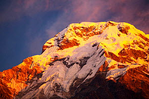 Alpenglow at sunrise on Annapurna South, Nepelese Himalayas. - Ashley Cooper