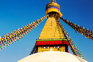 The Boudanath Stupa, is one of the holiest Buddist sites in Kathmandu, Nepal, December 2012. - Ashley Cooper