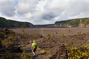 Hiker crossing the Kilauea Iki Crater, Hawaii Volcanoes National Park, Hawaii. Model released. December 2016. - Kirkendall-Spring