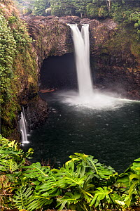 Rainbow Falls / Waianuenue with Cheese plants (Monstera deliciosa) in the foreground, Hilo, Hawaii. December 2016. - Kirkendall-Spring