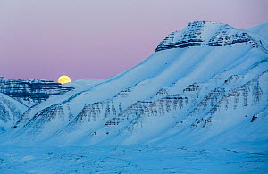 Full moon and landscape, Svalbard, Norway. April 2015.  -  Espen Bergersen