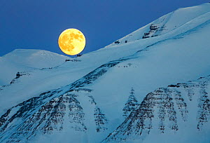 Full moon and snowy landscape from Svalbard, Norway. April 2015. - Espen Bergersen