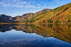 Llyn Crafnant, northern edge of Gwydir Forest, with view south west to Craig Wen. Near Llanwrst, Snowdonia National Park, North Wales, UK. October 2017. - Alan  Williams