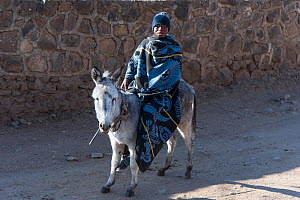 Young man wearing traditional blanket on donkey, Semonkong Lodge,  Lesotho, August 2017 - Rhonda Klevansky