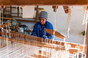 Weaver working mohair wool from Angora goats at Leribe Craft Center, Lesotho, July 2017.  -  Rhonda Klevansky