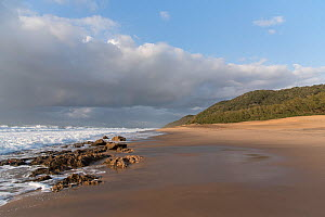 Cape Vidal beach in early morning, Isimangaliso Wetland Park. iSimangaliso Wetland Park UNESCO World Heritage Site, and RAMSAR Wetland. South Africa, August 2017. - Rhonda Klevansky