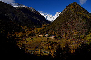 Park ranger station in the Baima Snow Mountain Nature Reserve, Yunnan, China, October 2017.  -  Staffan Widstrand / Wild Wonders of China