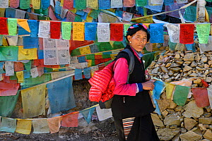 Tibetan woman  in front of Buddhist Prayer flags on the pilgrimage route around Meili Snow Mountain , 6740 m, a Sacred mountain for Tibetan Buddhists,  Yunnan, China, October 2017.  -  Staffan Widstrand / Wild Wonders of China