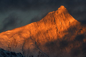 Meili Snow Mountain, 6740 m, covered in sunset light. a Sacred mountain for Tibetan Buddhists, Yunnan, China, October 2017. - Staffan Widstrand / Wild Wonders of China