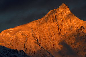 Meili Snow Mountain , 6740 m, a Sacred mountain for Tibetan Buddhists, yet unclimbed, Yunnan, China covered in sunset light. October 2017. - Staffan Widstrand / Wild Wonders of China