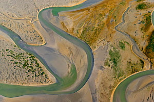 Aerial view of the Bay of Somme, Picardie, France, July. - David Allemand