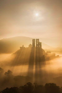 Corfe Castle in morning mist, Corfe, Isle of Purbeck, Dorset, England, UK. September 2013.  -  Guy Edwardes