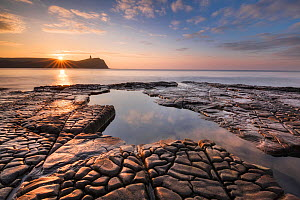 Rocky shore at Kimmeridge Bay with Clavell Tower in background, Isle of Purbeck, Jurassic Coast, Dorset, England, UK. December 2010.  -  Guy Edwardes