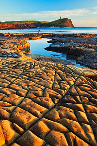 Rock formations at Kimmeridge Bay with Clavell Tower in background, Isle of Purbeck, Jurassic Coast, Dorset, England, UK. December 2010. - Guy Edwardes