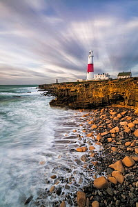 Portland Bill Lighthouse, Isle of Portland, Dorset, England, UK. November 2015.  -  Guy Edwardes