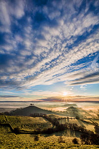 Colmer's Hill, Bridport, Dorset, England, UK. April 2016. - Guy Edwardes