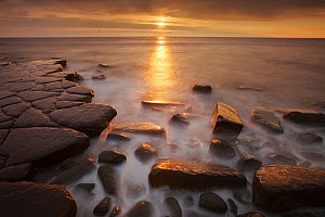 Sunset at Kimmeridge Bay, Isle of Purbeck, Jurassic Coast, Dorset, England, UK. December 2010.  -  Guy Edwardes
