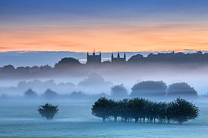 Wimborne Minster at dawn, Dorset, England, UK. August 2015.  -  Guy Edwardes