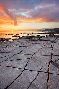 Rock formations at Kimmeridge Bay, Isle of Purbeck, Dorset, England, UK. October 2011.  -  Guy Edwardes