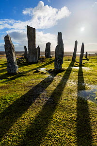 Callanish Stone Circle, Isle of Lewis, Outer Hebrides, Scotland, UK. March 2015. - Guy Edwardes