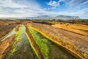 Warbeth Beach, Stromness, Orkney with view to Hoy. Orkney Islands, Scotland, UK. August 2014. - Guy Edwardes