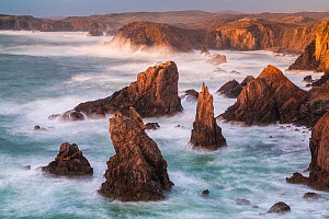 Sea stacks, Mangurstadh, Aird Feinis, Isle of Lewis, Outer Hebrides, Scotland, UK. March 2014. - Guy Edwardes
