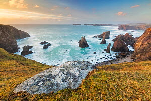 Sea stacks, Mangurstadh beach, Aird Feinis, Isle of Lewis, Outer Hebrides, Scotland, UK. March 2014. - Guy Edwardes