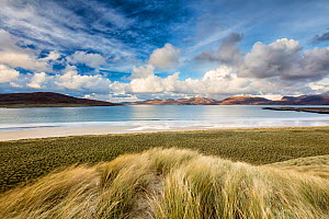 Sand dunes at Luskentyre with view to Taransay. Isle of Harris, Outer Hebrides, Scotland, UK. November 2016.  -  Guy Edwardes