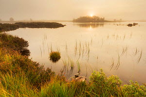 Loch Ba, Rannoch Moor, Highlands, Scotland, UK. September 2013. - Guy Edwardes