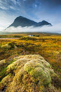Buachaille Etive Mor, Rannoch Moor, Highlands, Scotland, UK. September 2013. - Guy Edwardes