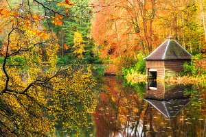 Boat hut on lochshore, Faskally Forest, Pitlochry, Perthshire, Scotland, UK. October 2014.  -  Guy Edwardes