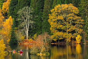 Canoes on Loch Tummel, Perthshire, Scotland, UK. October, 2014. - Guy Edwardes
