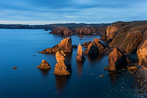 Sea stacks at Mangurstadh / Mangersta, Isle of Lewis, Outer Hebrides, Scotland, UK. October, 2013.  -  Guy Edwardes