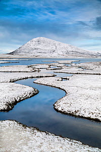 Saltmarsh. Isle of Harris, Scotland, UK. March, 2015.  -  Guy Edwardes