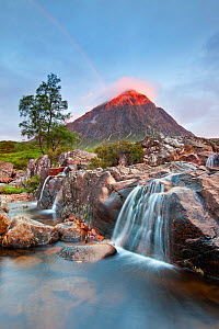 Buachaille Etive Mor, Glen Etive, Glencoe, Highlands, Scotland, UK. July, 2012.  -  Guy Edwardes